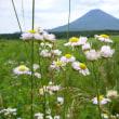 夏の富士山(ふじさん)2013