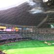 ホークスファンのわが子と、福岡ドームに応援に行きました。^_^