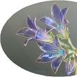 ガラス細工の様な心の星:傷官