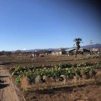 富士山の見える風景