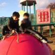 寒い日の公園