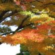 山形県赤湯(烏帽子山)の紅葉。