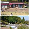 小田原漁港と一夜城ヨロイズカ・ファームへ