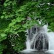 1928 涼しい滝