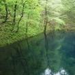 世界遺産「白神山地」の麓の十二湖での森林セラピー体験、最高のリラックスタイムとなりました!