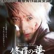 「修羅の華」、キム・ヘス主演のアクション映画!