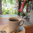 Kona's Coffee shop