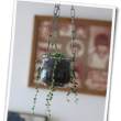 グリーンネックレス(多肉植物)ハンギング(100均の鎖で)