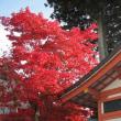 高野山にいってきた2016秋。