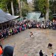 土佐の三大祭「仁淀川町の秋葉祭り」