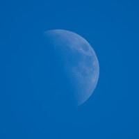 今年最小の上弦の月