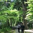 大奥、大奥〜♪ 大矢田神社。