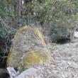 恵比寿様を崇める遥拝の場所がありました