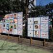 台東区長および区議会議員選挙