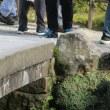 兼六園 橋巡り ①虹橋、月見橋、木橋