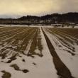 日東流の季節風に抗う 十七話 鳴沢からの津軽富士