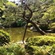 東京都庭園美術館、新型ロマンスカーGSE