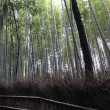 京都から大阪へ・・・2