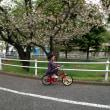 みー、自転車に乗る