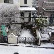 雪にご注意。昨日のワークショップにご参加ありがとうございました。