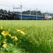 東武鉄道「大樹」スッカスカ物語