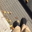 SOU SOU の足袋