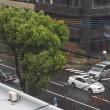 2018年05月07日(月曜日) 雨が降ったり、止んだり。 昼過ぎなど、強風雨&雷。。