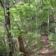 高尾山から大垂水峠・高尾南陵ルートを周回する