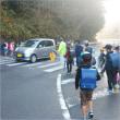 🎵 朝霧の流れる中を子らは元気に登校し、 さくらは向かうひまわりコーラス