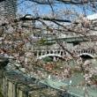 【本格的走り込み Stage2-②】Jog/桜の季節