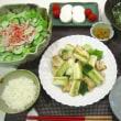 ☆ネギと鶏むね肉の塩コショウ炒め☆