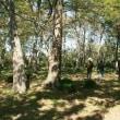 玉村にある角渕キャンプ場に行ってきた