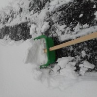 雪が積ったので雪かきをした。
