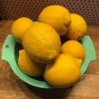 塩レモン作りやりたいヒト募集!
