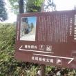 芦ノ湖立ち寄り帰り道 11.5