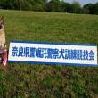 2018年奈良県嘱託犬競技大会