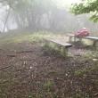 梅雨の合間に笹子の山