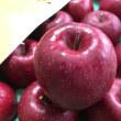 金賞受賞の盛岡りんご