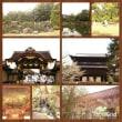 京都旅行・・・ラスト