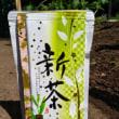 静岡茶発祥の地「足久保の新茶」いかがでしょう?