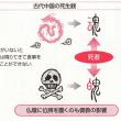 中国古代社会の死生観(宗教の成立5①)