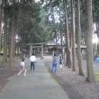 天気が良かったので公園へ