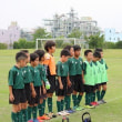 戸田市ジュニアグリーンカップ(3年)2日目 6月23日(土)