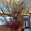 """4/8(日)「Hotel La Suite Kobe Harborland」""""GRAND BLEU""""The125th Smooth Sounds"""