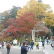 高尾山に行ってきました!