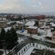 新井に初雪