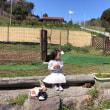 農園でお弁当(^^)椎茸狩り(^^)