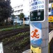 渋谷区幡ヶ谷で畑を発見!