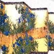 「【特別展】没後50年記念 川端龍子 ―超ド級の日本画―」