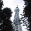 東京旅行2017夏